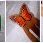 La mariposa  monarca