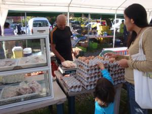 Huevos, pollos y carne orgánicos a buen precio!