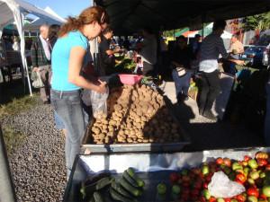 Papás, chiles, piñas orgánicas