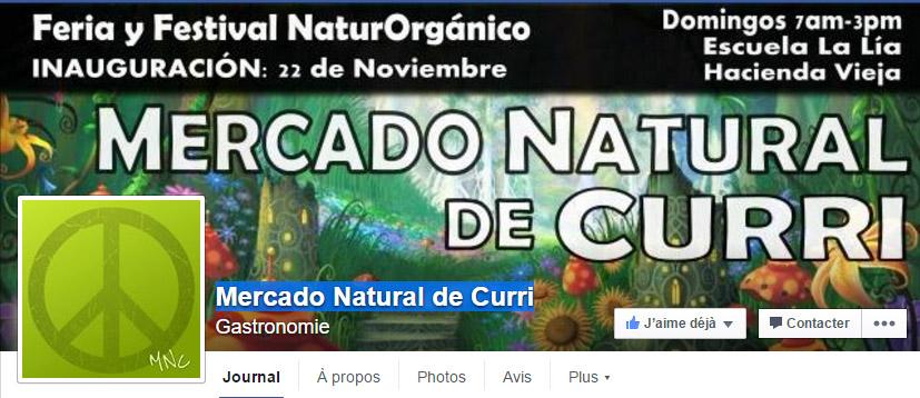 Una nueva Feria orgánica y verde en Costa Rica!