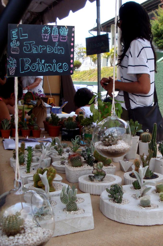 feria_holistica_evento_festival_costa_rica_companeros003
